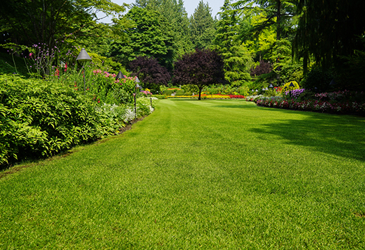 Lawn Care Services New Prague